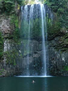 Around Cairns - Milaa Milaa Falls (1)