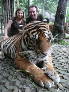 Chiang Mai - Tiger Kingdom (132)
